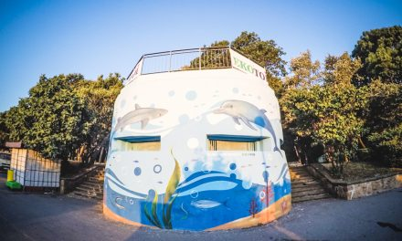 Painted as a seabed bunker – Street art in Burgas 28