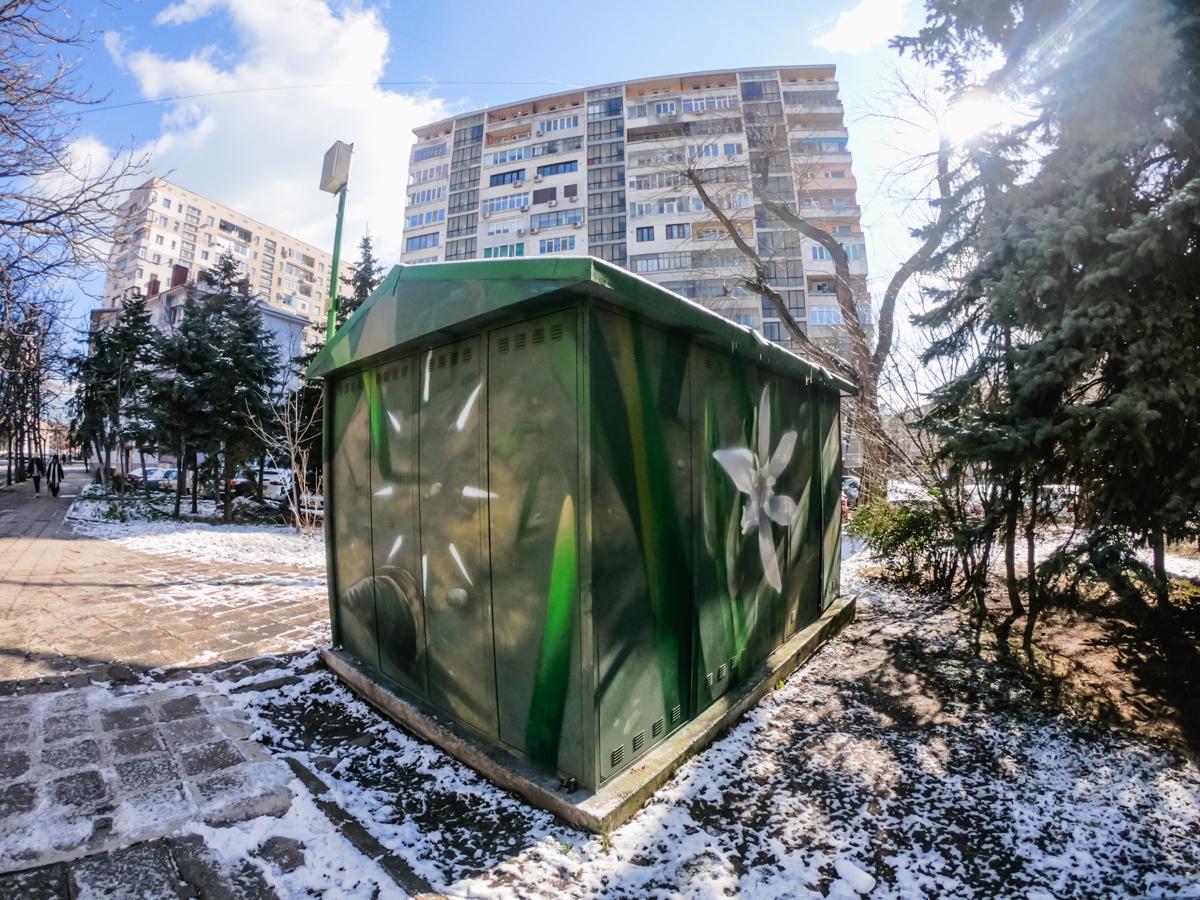L·E·A·F· street art in Burgas