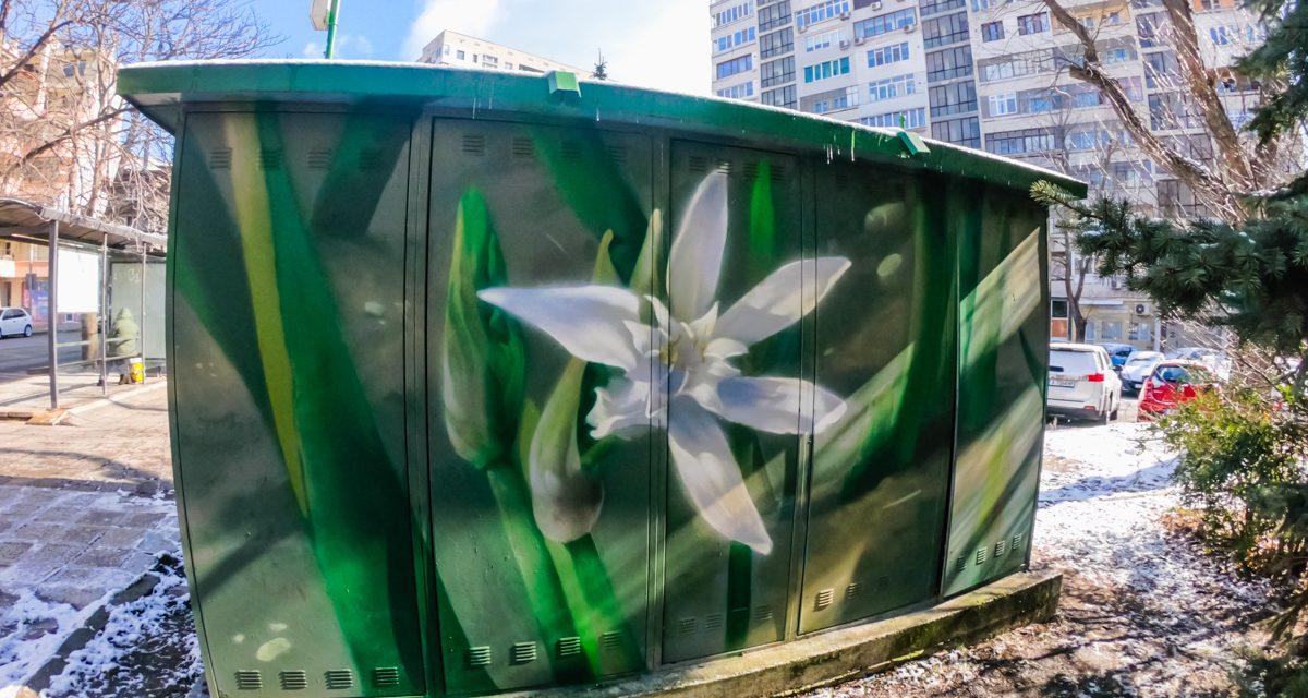 Sand lily – L·E·A·F· in Burgas 2