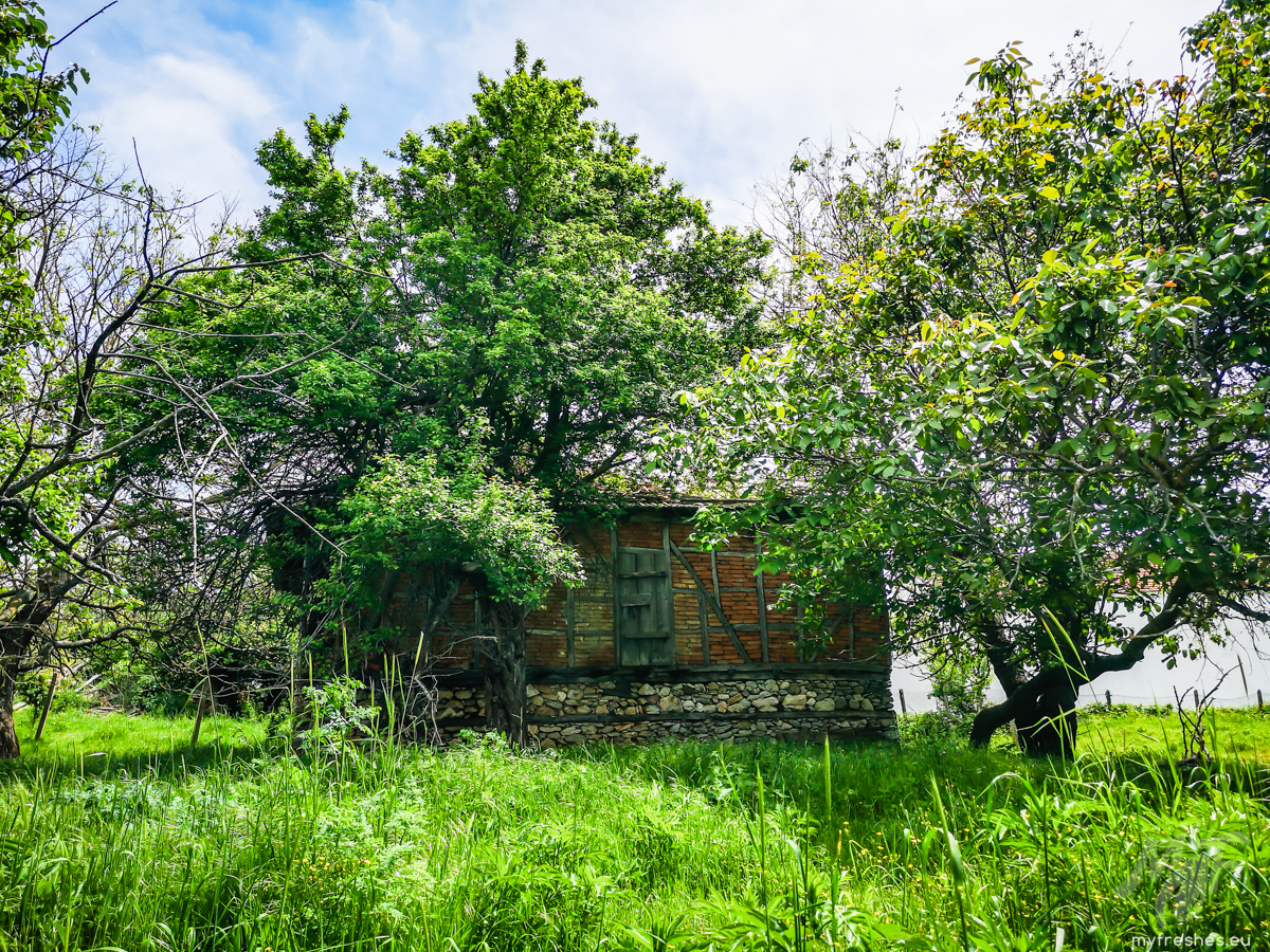 Село Варовник